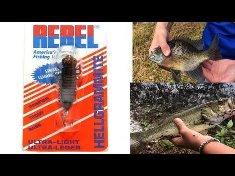 The Fishing Hellgrammite CHALLENGE