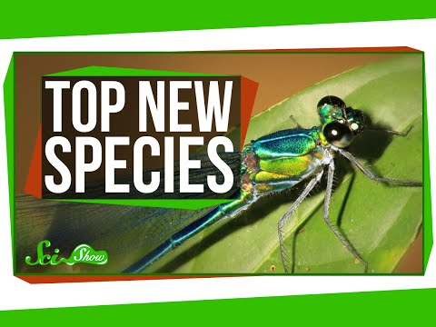 Top New Species For 2016, And A Perching Robot!
