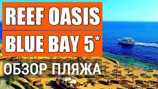 Reef Oasis Blue Bay Resort 5 обзор Пляж пирс заход в море Отдых в Египте Шарм Эль Шейх