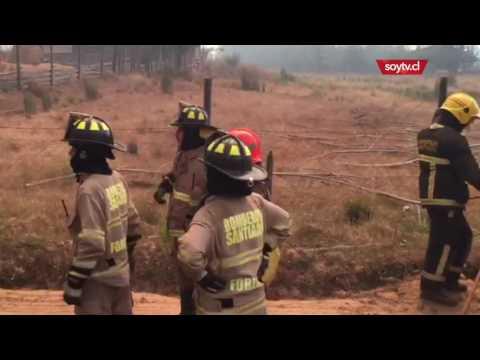 """Bomberos de Chile post incendios: """"No estamos dispuestos a recibir un sueldo"""""""