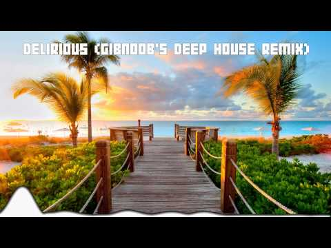 Delirious (Boneless) - Steve Aoki (Gibnoob's Deep House Remix)