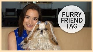 Furry Friend Tag | All About Winnie