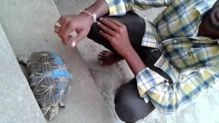 Chary Gnaneshwar with tartois