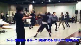 TAKARAZUKA WAY TO 100th ANNIVERSARY vol.4 エリザベート スペシャルガ...