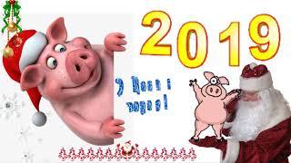 СУПЕР!!!С новым 2019 г. С годом СВИНЬИ! Футаж с новым годом! Поздравление с новым годом!