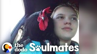 A Day in the Life of a Rooster and His Best Friend | The Dodo Soulmates
