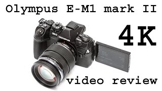 Olympus E-M1 mark II as video recording camera (review)