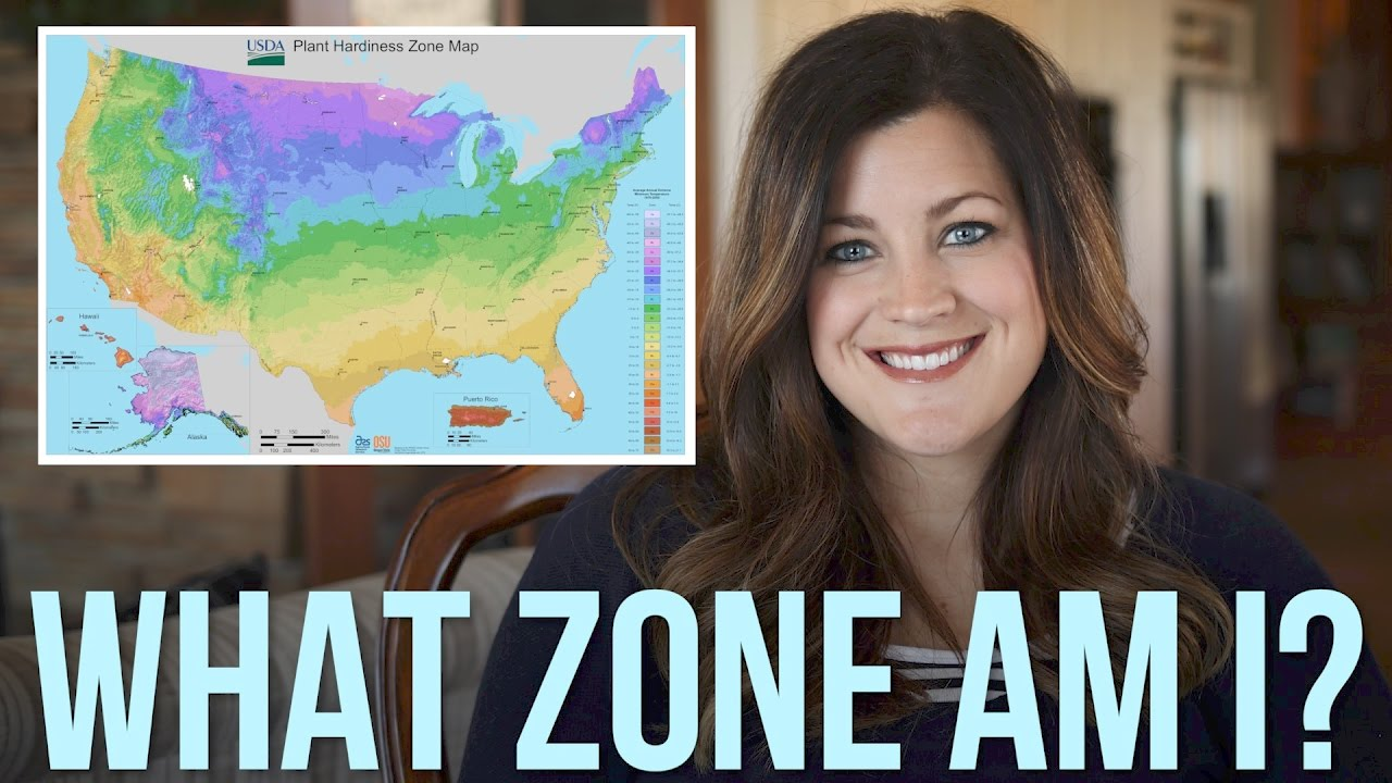 US Plant Zones: Explained // Garden Answer #1