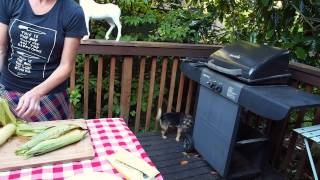 Grilling Corn On The Cob 101.