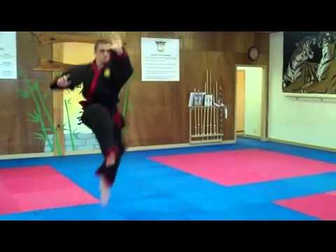 Ming Wu fist of Yin Yang by Sifu Brent Rudisill