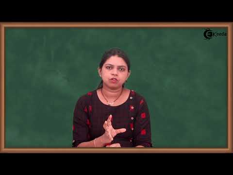 Introduction To HTML - HTML - Computer Science Class 12