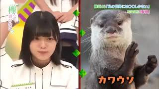 欅坂46 世界には愛しかない.