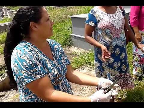 DESMANCHE DE MACUMBA AREA SENTIMENTAL CENAS FORTE PR MARINALVA