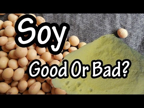 Soy - Soybean - What Is Soy - Health Benefits Of Soy - Is Soy Bad