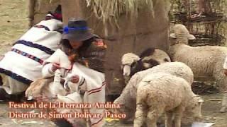 Festival de la Herranza Andina en el Distrito de Simón Bolivar (Pasco)