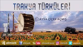 Gambar cover Hüseyin Özcan - Ayva Çiçek Açmış [ Trakya Türküleri ]