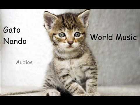 odd-nordstoga-heim-te-mor-noruega-musicas-del-mundo-de-gato-nando