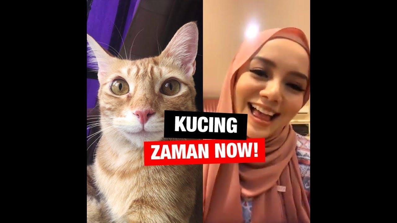 Kucing Zaman Now [feat. Mira Filzah]