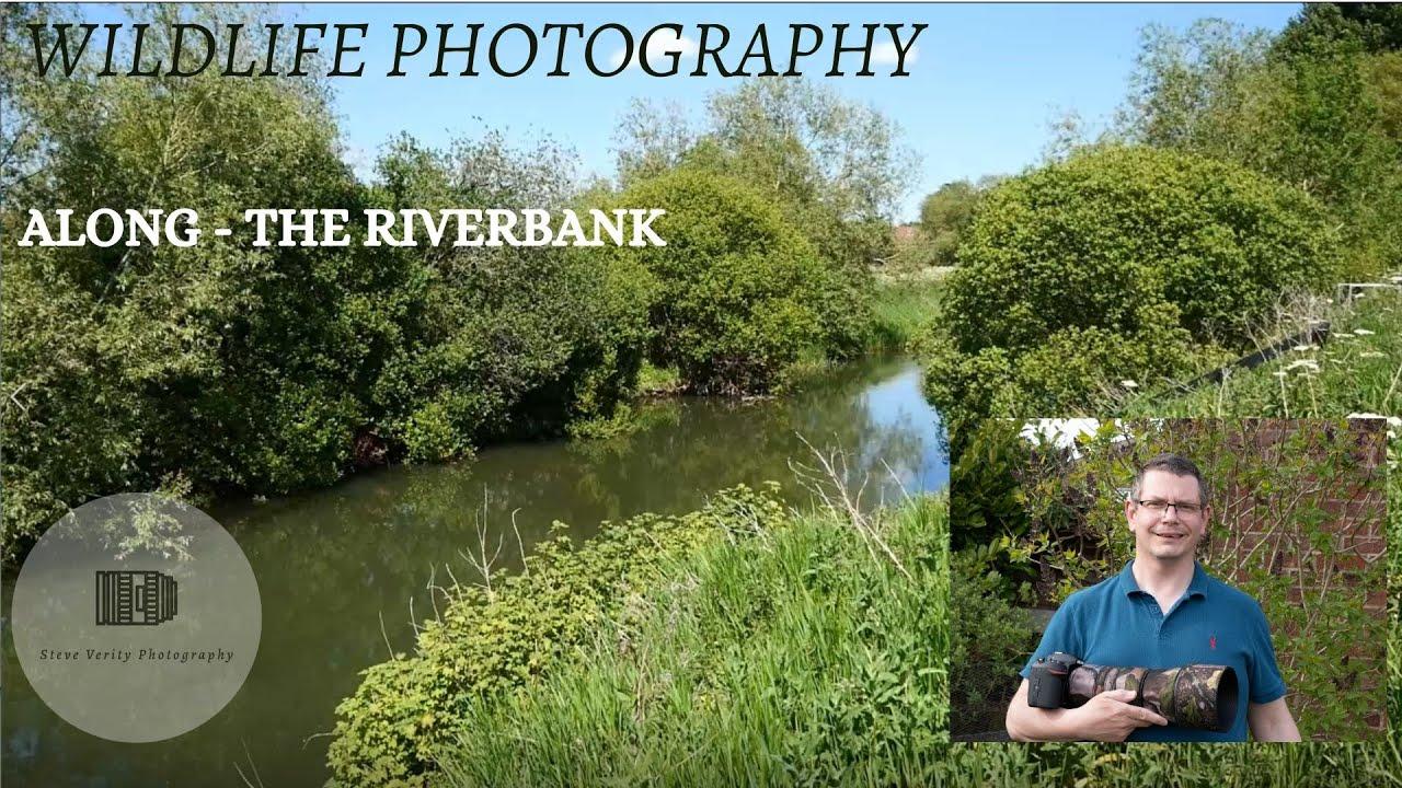 ALONG the river bank