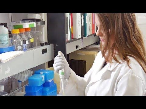 DMD/PhD Program: Training the Next Generation of Dental Scientists