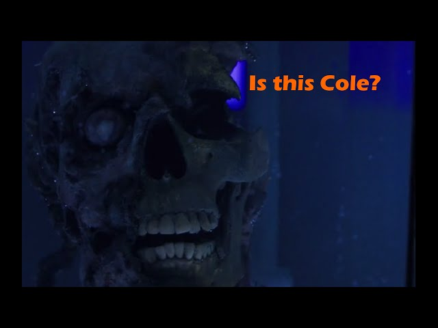 12 Monkeys theory:  is Cole the origin?