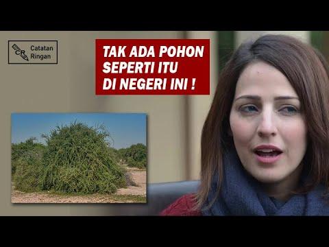 Hasil Penelitian Mencengangkan Terhadap Pohon Gharqad