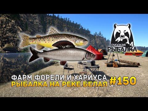 Фарм Форели и Хариуса. Рыбалка на реке Белая - Русская Рыбалка 4 #150