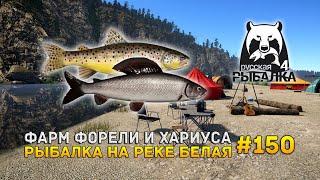 Фарм Форели и Хариуса Рыбалка на реке Белая Русская Рыбалка 4 150