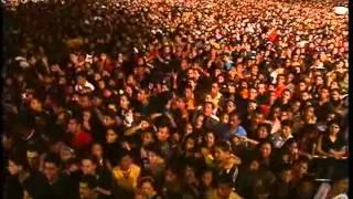 Companhia Do Calypso 1º DVD Ao Vivo Em Recife Completo