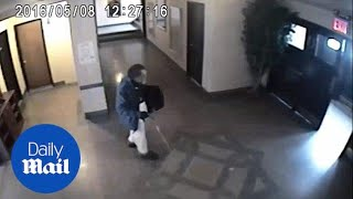 Thief caught on camera stealing a painting from a church - Daily Mail