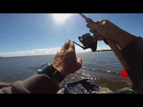 работа рыбалка спб