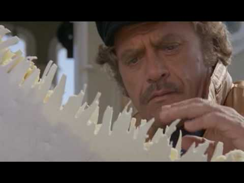 El último Tiburón (Tiburón 3)  1981