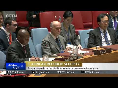 Bangui appeals to the UNSC to reinforce peacekeeping mission