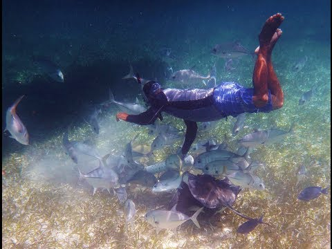 Snorkeling The Great Barrier Reef Of Belize