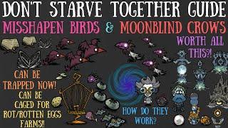 Don't Starve Together Guide: Misshapen Birds And Moonblind Crows