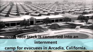 Japanese American Internment MOVIE final