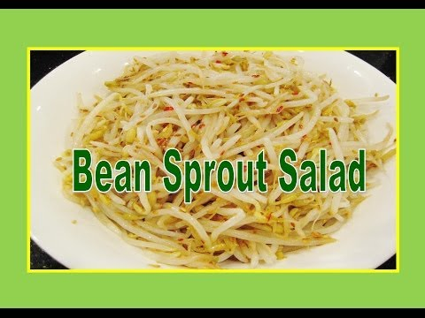 Bean Sprout Salad Recipe - Liz Kreate