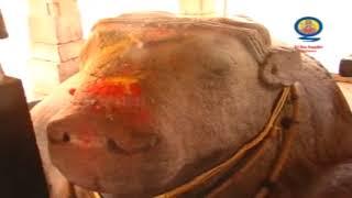 Yaganti Basvanna    Yaganti Nandi History    Yaganti Wonders