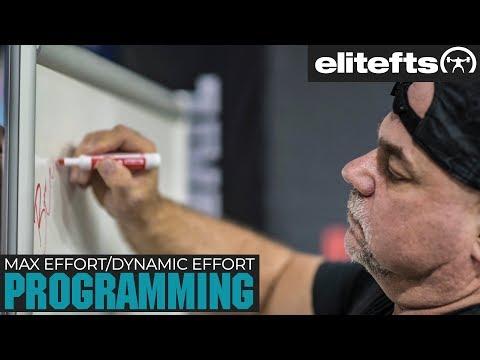 Max Effort/Dynamic Effort Programming with Dave Tate   elitefts.com