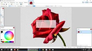 Paint.net. Урок 6 - Форматы изображений. Размер на диске, качество и свойства рисунков