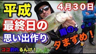 【バス釣り】平成最終日4月30日!雨の夕まずめ・バス釣りチャレンジ!野村ダム釣行♪