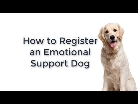 Register an Emotional Support Dog