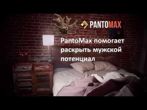 Пантомакс - для эрекции