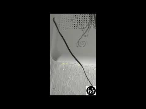 cara-mudah-reset-modem-fiberhome-indihome