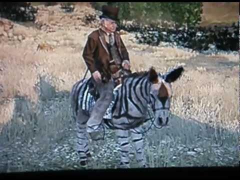 Rdr Zebra Donkey Esel Youtube
