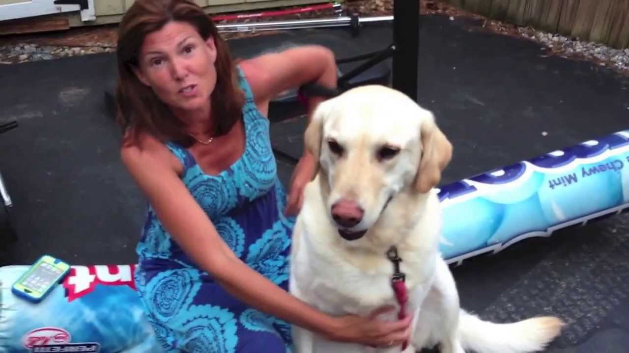 wife with dog