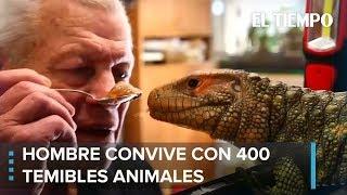 Fanático de reptiles convive con 400 criaturas en Francia | EL TIEMPO
