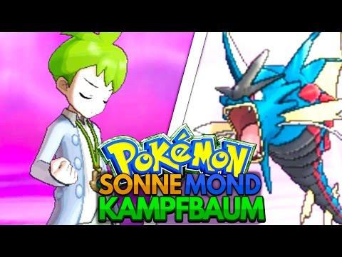 wolverock nacht pokemon