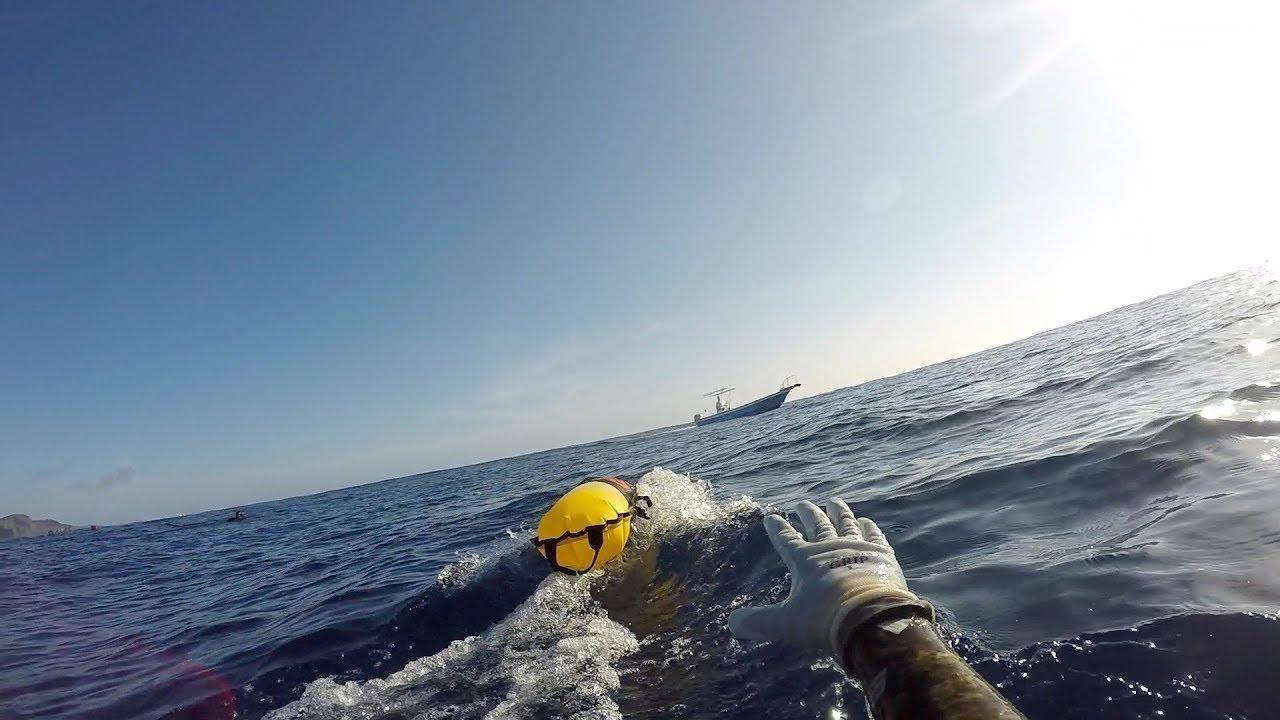 Spearfishing laws okinawa Okinawa spearfishing