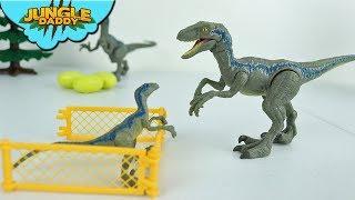 LOST BABY DINOSAUR in Jurassic World   Jungle Daddy Velociraptor story dinosaur toys for kids